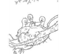 e-kolorowanki, ptaki (4)