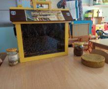 pszczelarze (4)