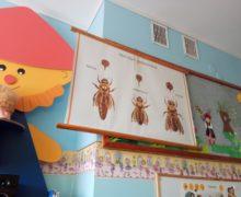 pszczelarze (5)